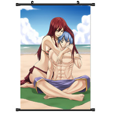 Anime Fairy Tail Erza Scroll Wall poster cosplay 2657