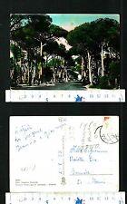 FREGENE (RM) - VIALE DELLA PINETA - 54906