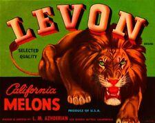 Los Banos Blythe California Levon Lion Melon Fruit Crate Label Art Print