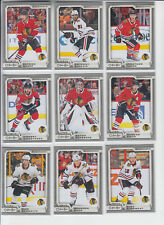 18/19 OPC Chicago Blackhawks Anthony Duclair Silver card #113