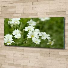 Glas-Bild Wandbilder Druck auf Glas 125x50 Blumen & Pflanzen Frühlingsblumen