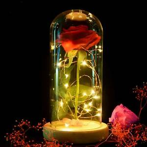 Red Rose in Glass Dome with LED Light Mother Day Birthday Anniversary Her Him