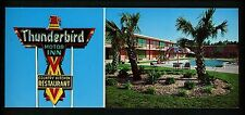South Carolina SC Oversized postcard Thunderbird Motor Inn Motel Florence