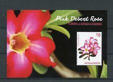 Antigua & Barbuda 2015 MNH Pink Desert Rose Flowers 1v S/S Flora