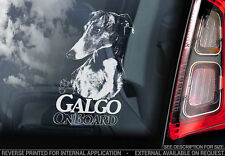 Galgo - Car Window Sticker - Dog Sign -V02