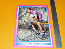 N°89 & 90 FONDRIEST MERLIN GIRO D'ITALIA CICLISMO 1995 CYCLISME PANINI TOUR