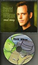 DAVID WILCOX w/ PHIL KEAGGY Soul Song PROMO DJ CD single USA MINT Glass harp USA