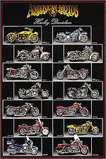 MOTORCYCLE ART PRINT Harley Davidson Chart