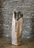 versteinertes Holz fossiles Holz poliert petrified wood Steinobjekt 13,30kg vH46