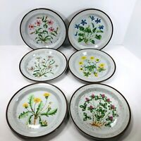 Vintage Japan Speckled Stoneware Salad Plates Wildflowers 8in 201-206 Set Of 6