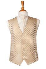 DQT Intrecciato Greco Chiave con motivo Marigold Formale Matrimonio Cravatta Da Uomo Classic