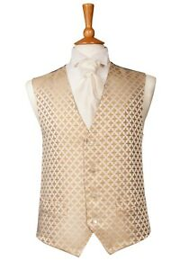 """waistcoat gold TUDOR SIZE 44"""" FROM ONLY £2"""