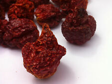 Carolina Mietitore Dry Chilli baccelli-gli Hot Pepper Company