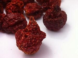 Carolina Reaper Dry Chilli Pods - The Hot Pepper Company