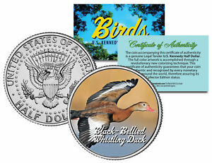 BLACK-BELLIED WHISTLING DUCK *Collectible Birds* JFK Half Dollar Colorized Coin