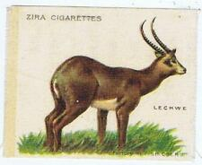 Zira Cigarettes S3 animals Lechwe cigarette silk 376