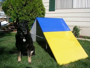 Dog Agility Equipment Mini A-Frame / A Frame / AFrame