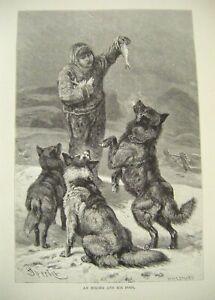 Original Antique Wood Engraved Print ~ 'An Eskimo & His Dogs'  c1889 ~ F. Specht