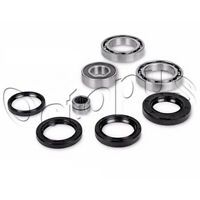 Arctic Cat 375 4x4 ATV Bearing & Seal Kit for Front Differential 2002