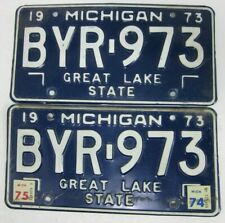 Michigan Great Lake pair licence/number plate US/United States/USA/American
