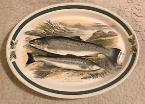 """Portmeirion The Compleat Angler Oval Platter. Sewen Welsh Sea Trout. 13"""" X 9½"""""""