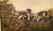 Currier & Ives  1954 POINTER DOGS IN ACTION ART WOW!
