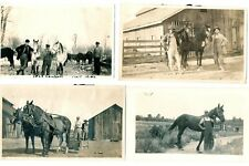 Lot of 4 VG photos (5 x 3.5) of farmers and their horses, in VG condition