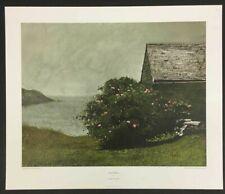 """Island Roses"" by James Wyeth (Fine Art Print)"