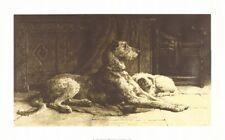 Scottish Deerhound Print, Patience by Herbert Dicksee