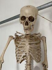 More details for halloween hanging skeleton posable articulated large 1m decoration