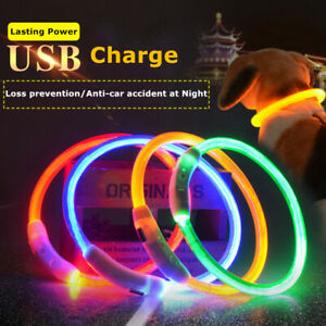 USB Rechargeable Pet Dog LED Collar Flashing LightUp Safety Waterproof Belt