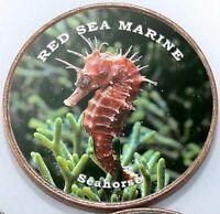 Somaliland 1 shilling 2018 UNC Seahorse - Red Sea Marine unusual coin