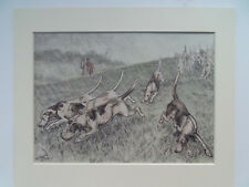 "DOGS SETTERS HUNTING HOUNDS  ORIGINAL OLD HAND-COLOURED  DATE 1879 9""X11"" MOUNT"