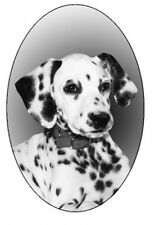 "4""X6 Dalmatian static cling etched glass window decal"