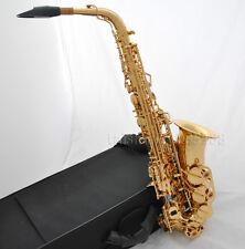 Professional Gold Alto saxophone double rails low C,Bb,Abalone shell key