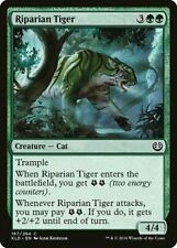 Magic the Gathering (mtg): KLD: Riparian Tiger - Foil