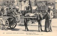 POSTCARD   EGYPT  ETHNIC   WIVES  Drive on  the  Spee      LL  127