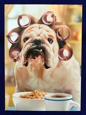 """Avanti Greeting Cards - Almost Funny - """"Can you call in grumpy to work? """""""