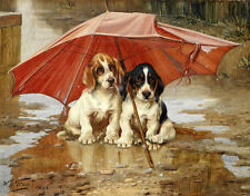 Print Rainy Day Cute Puppy Dog Oil painting printed on canvas 12X16 inch L1286