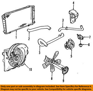 FORD OEM Radiator Coolant-Lower Hose YW7Z8286AA