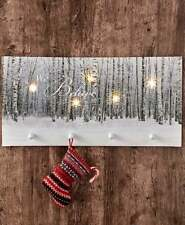 """Light-Up Winter Forest Scene """"WE BELIEVE"""" Christmas Canvas Wall Art with Hooks"""