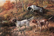 Antique Hunting 8X10 Osthaus Photograph Reprint English Setters English Pointer
