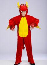 Kids Size Red Dragon Fancy Dress Costume