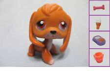 Littlest Pet Shop #16 Dog Puppy Brown BEAGLE Purple +1 FREE Accessory Authentic