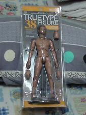 Hot Toys HT  Truetype TTM08 Narrow Shoulder