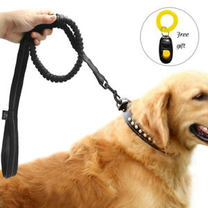 Black Nylon Dog Leash With Padded Handle Reflective Bungee Shock Leads + Clicker
