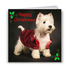 Westie In Jacket Christmas Card - Dog West Highland White Terrier