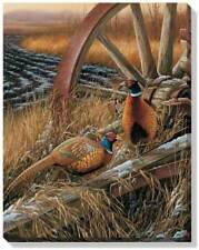 Wild Wings Rustic Outlook Pheasants 20.5 x 16 Canvas Wrap by Rosemary Millette