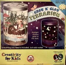 Grow N Glow Terrarium Project Activity For Kids