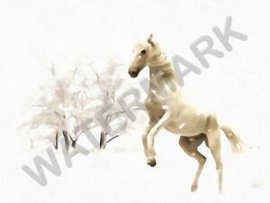"""White Horse Winter Snow Painting 12x16 """" POSTER ART PRINT HP3624"""
